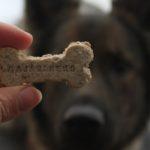 Allergikerfreundliche Hundekekse
