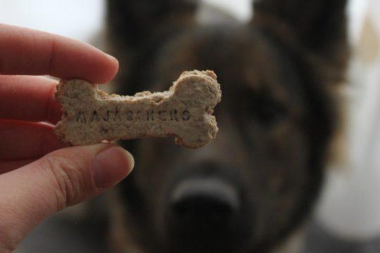 Sonja hat ein super Rezept für schnelle und allergikerfreundliche Hundekekse.